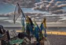 """""""Marotta e la pesca"""" in un concorso fotografico"""