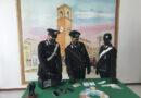 Sequestrati dai carabinieri di Fano ingenti quantitativi di droga: 5 arresti e 13 denunce