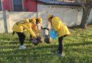 Volontari puliscono le aree verdi di Marotta: raccolti diversi chili di plastica e rifiuti abbandonati